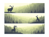 Horizontal Banners of Hills Coniferous Wood. Prints by  Vertyr