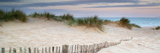 Panorama Landscape of Sand Dunes System on Beach at Sunrise Posters by  Veneratio