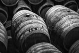 Wine Barrels in Black and White Fotografisk tryk af kiko jimenez