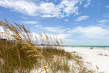 Siesta Key Beach Sarasota Florida Photographic Print by  arenacreative