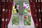 Window View onto Wild Summer Garden Photographic Print by  MrEco99