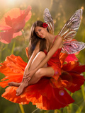 Brunette Girl Elf with  is Sitting on a Flower Poppy Photographic Print by  Lilun