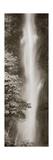 Multnomah Falls Panel Premium Giclee Print by Alan Majchrowicz