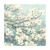 Dogwood Blossoms II Posters af James Wiens