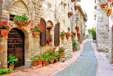 Flower Filled Italian Lane Photographic Print by Jeni Foto