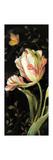 Jardin Paris Florals II Premium Giclee Print by Danhui Nai