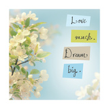 Love Much Dream Big Posters