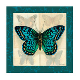 Silk Butterfly I Prints
