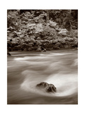 Nooksack River North Cascades Crop Prints by Alan Majchrowicz