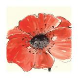 Spring Poppy IV Art by Chris Paschke