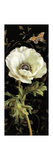 Jardin Paris Florals I Premium Giclee Print by Danhui Nai