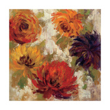 Fiery Dahlias II Prints