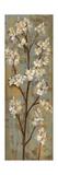 Almond Branch I Premium Giclee Print