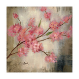 Cherry Blossom I Giclee Print