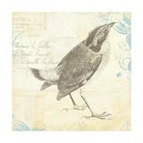 Engraved Birds I Giclee-trykk av Katie Pertiet
