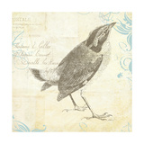 Engraved Birds I Giclee Print by Katie Pertiet