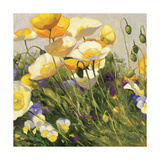 Poppies and Pansies I Giclee-trykk
