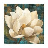 Magnolia Blossom Turquoise Giclee Print by Albena Hristova