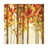 Autumn Forest Study II Reproduction procédé giclée par Lisa Audit