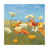 Springtime Meadow I Art