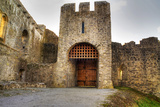Gate to Adare Castle - Ireland, HDR Photographic Print by Patryk Kosmider