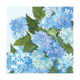 Decorative Hydrangea I Prints by Kathrine Lovell