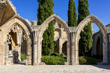 Bellapais Abbey near Kyrenia, Northern Cyprus Photographic Print by Dmitry Pogodin