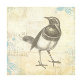 Engraved Birds II Giclee-trykk av Katie Pertiet