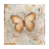 Butterfly IV Prints by Cassandra Cushman
