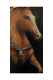 Napoleon's Horse Giclee Print by JC Pino