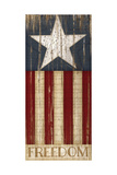 Stars and Stripes Giclee Print by Jennifer Pugh