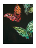 Butterflies Giclee Print by JC Pino