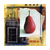 Reveal Giclee Print by Linda Woods
