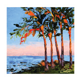 Hawaii Shores Lámina por Leslie Saeta