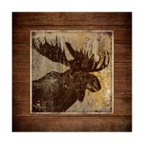 Moose Portrait Prints by Stephanie Marrott
