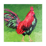 Rooster VIII Art by Leslie Saeta