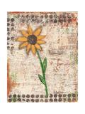 Sunflower Giclee Print by Cassandra Cushman