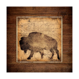 Bison King Prints by Stephanie Marrott