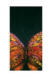 Crop Butterfly Giclee Print by JC Pino