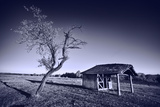 Monochrome Toned Image of Old Wooden Shelter Photographic Print by  Xilius