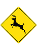 Deer Crossing Sign Poster Posters