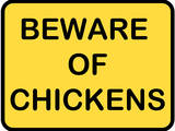 Beware of Chickens Prints