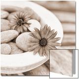 Stone Flower Plakater