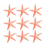 Starfish Tropical Prints by Jace Grey