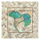 Gingko Rejuvenate 2 Prints by Beverly Dyer