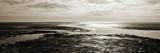 Tidal Streams Art by Noah Bay