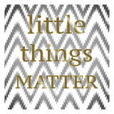 Little Things Matter Posters by Taylor Greene