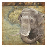 Elephant Travel Posters by Jace Grey