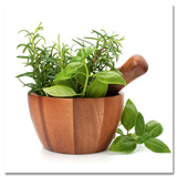 Flavoring Herbs Poster