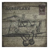 Vintage Aeroplane Prints by Taylor Greene
